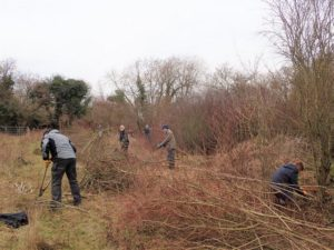 Photo: BC volunteers at work clearing scrub (photo by Nick Bowles - kitenet jnr is wielding a bow-saw at the bottom-right of the picture!)
